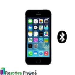 Reparation Bluetooth iPhone 5S/SE