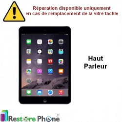 Reparation Haut Parleur iPad Mini 1, 2 et 3