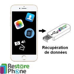 Réparation Bouton On/Off + Volume + Vibreur iPhone 5S